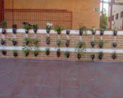 Estrenamos jardín vertical ecológico